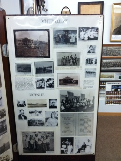 DeWitty Colony