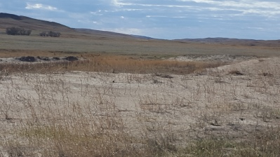 Walker & Hatter property